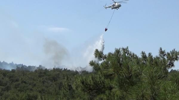 Bayramiç'te Orman Yangını Çıktı